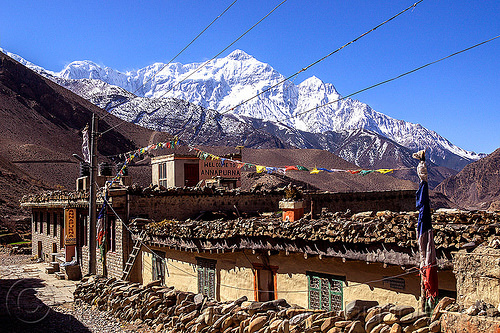 annapurna lodge in kagbeni village (nepal), annapurna lodge, annapurnas, guesthouse, kagbeni, kali gandaki valley, mountains, nilgiri, peak, snow, village