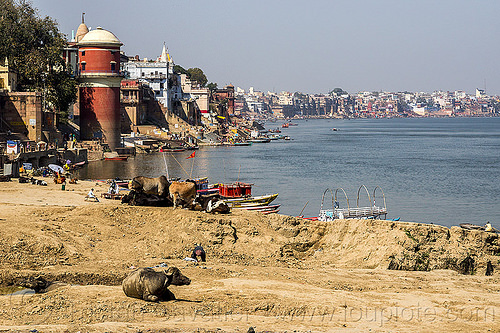 assi ghat - varanasi and the ganges river (india), assi ghat, ganga, ganges river, ghats, india, river bank, varanasi