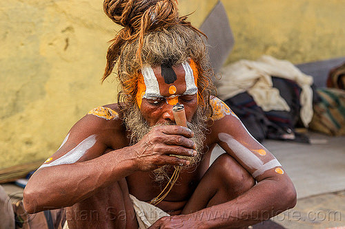 baba holding a chillum of ritual cannabis at the shivaratri hindu festival (nepal), baba, beard, bhang, cannabis, chillum, dreads, festival, hindu, hinduism, kathmandu, knotted hair, maha shivaratri, man, marijuana, pashupati, pashupatinath, sadhu, smoking, tilak, tilaka