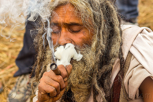 baba smoking a chillum of weed - clay pipe (india), baba, beard, cannabis, chillum, dreadlocks, dreads, hindu, hinduism, kumbha mela, maha kumbh mela, man, marijuana, pipe, sadhu, smoking, thick smoke