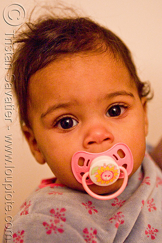baby with pacifier - mia, baby, child, girl, kid, mia, pacifier, toddler