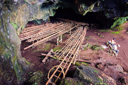 bamboo and rattan ladders used by bird's nests collectors - madai cave (borneo), bamboo ladders, bird's nest, cave mouth, caving, gua madai, ida'an, idahan, madai caves, natural cave, rattan, spelunking