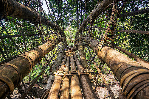 bamboo bridge - east khasi hills (india), bamboo bridge, east khasi hills, footbridge, india, jungle, mawlynnong, meghalaya, rain forest, river