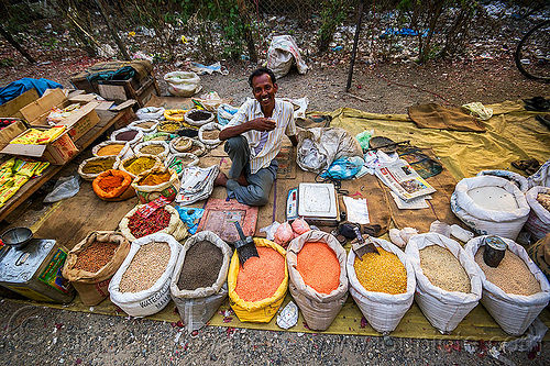beans and spices stall at street market (india), beans, gairkata, man, people, sacks, spices, stall, street market, vendor, west bengal