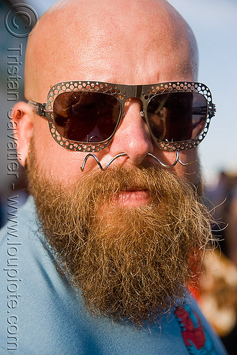 bearded man with sunglasses and nose piercing - dusti cunningham aka diablodivine, bald head, beard, diablodivine, dusti cunningham, man, nose piercing, septum piercing, sunglasses