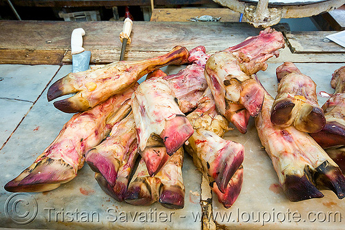 beef feet on butcher staff, beef, butcher, feet, meat market, meat shop, mercado central, noroeste argentino, raw meat, salta