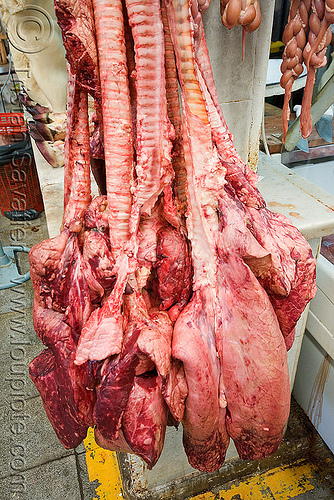 beef lungs, beef, butcher, lungs, meat market, meat shop, mercado central, noroeste argentino, organs, raw meat, salta, tracheas