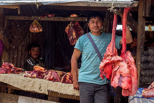 beef lungs hanging at meat market (india), beef lungs, butcher, east khasi hills, hanging, indigenous, meat market, meat shop, meghalaya, men, organs, pynursla, raw meat