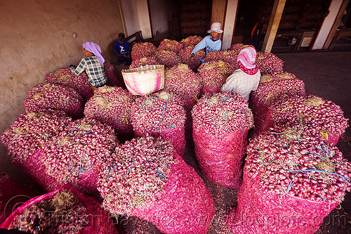 big bags of shallots in bulk market, allium cepa, bags, bulk market, foodstuff, java, produce market, shallots, vegetable, veggie, women, working