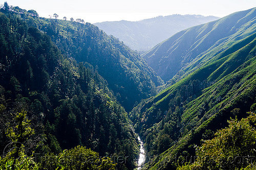 big sur canyon (vantana wilderness), big sur river, canyon, forest, gorge, hiking, pine ridge trail, stream, trees, trekking, v-shaped valley, vantana wilderness