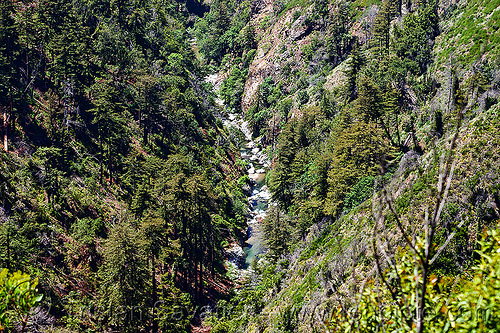 big sur river - vantana wilderness, big sur river, canyon, forest, gorge, pine ridge trail, stream, trees, trekking, valley, vantana wilderness
