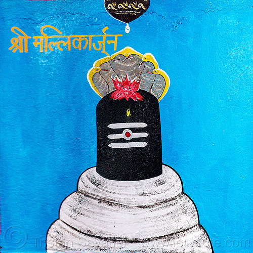 black lingam - lotus flower and five-headed naga snake - hindu symbolism (india), cobra, five-headed, hindu temple, hinduism, india, lotus flower, naga snake, nāga snake, painting, shiva lingam, symbol, symbolism, water droplet