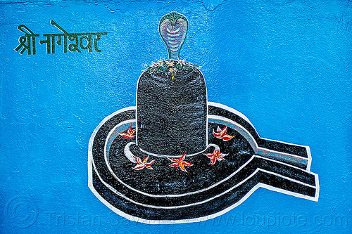black lingam - naga snake - hindu symbolism (india), cobra, five-headed, flowers, hindu temple, hinduism, india, naga snake, nāga snake, painting, shiva lingam, symbolism