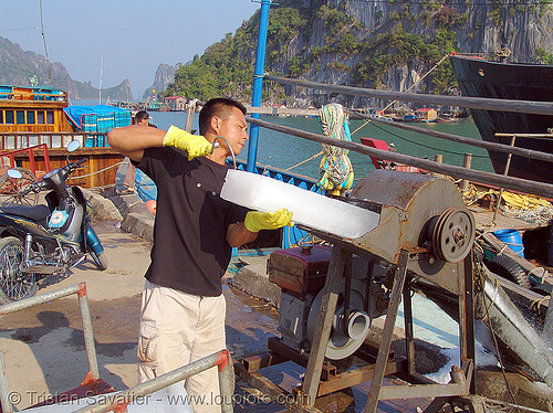 block ice shaving, block ice, cold, fisherman, fishing boats, fishing trawlers, ice block, ice shaver, machine, man, shaving, vietnam