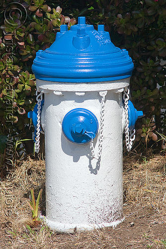 blue and white fire hydrant (san francisco), awss, blue, fire department, fire hydrant, sffd, white