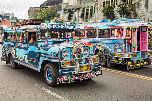 blue jeepneys (philippines), baguio, colorful, decorated, jeepney, painted, philippines, road, truck