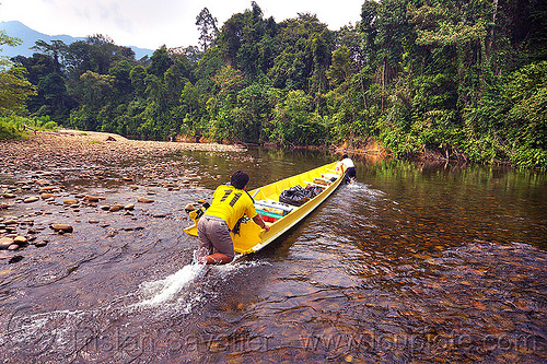 boatmen pushing boat up the shallow waters of the melinau river - mulu (borneo), boatman, boatmen, borneo, gunung mulu national park, jungle, malaysia, melinau river, men, plants, rain forest, river bed, river boat, rocks, shallow river, small boat, sungai melinau, trees, wading