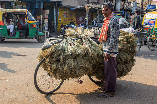 broomsticks street vendor and bicycle (india), bicycle, bike, brooms, broomsticks, cargo, freight, india, man, merchant, standing, street seller, street vendor, transporting, varanasi