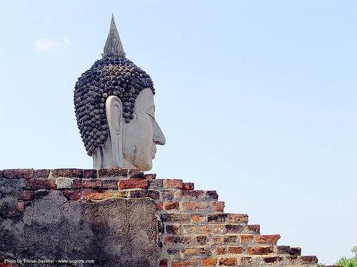 พระพุทธรูป - buddha's head - statue - อุทยาน ประวัติศาสตร์ สุโขทัย - เมือง เก่า สุโขทัย - sukhothai - thailand, bricks, buddha image, buddha statue, buddhism, buddhist temple, sculpture, wall, wat, ประเทศไทย, พระพุทธรูป, สุโขทัย, อุทยาน ประวัติศาสตร์ สุโขทัย, เมือง เก่า สุโขทัย
