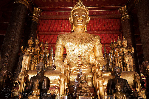 buddha statues in temple - luang prabang (laos), buddha image, buddha statue, buddhism, buddhist temple, cross-legged, golden, golden color, sculpture