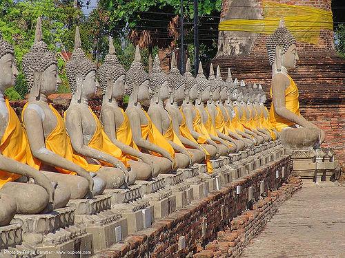 พระพุทธรูป - buddha statues raw - อุทยาน ประวัติศาสตร์ สุโขทัย - เมือง เก่า สุโขทัย - sukhothai - thailand, buddha image, buddha statue, buddhism, buddhist temple, cross-legged, identical, many, row, sculpture, sukhothai, wat, ประเทศไทย, พระพุทธรูป, อุทยาน ประวัติศาสตร์ สุโขทัย, เมือง เก่า สุโขทัย