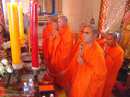 buddhist monks in a chinese temple - สุโขทัย - sukhothai - thailand, bhagwa, buddhism, buddhist temple, candles, chinese, monks, orange, prraying, red, saffron color, singing, sukhothai, wat, yellow, ประเทศไทย, สุโขทัย