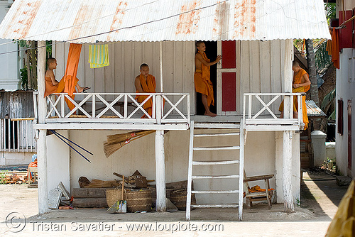 buddhist monks - luang prabang (laos), buddhist monks, luang prabang, temple