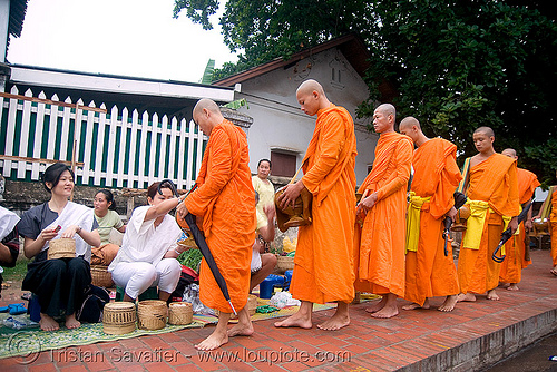 buddhist monks receiving alms - luang prabang (laos), alms bowl, bhagwa, buddhism, dawn, orange, rice, saffron color, street