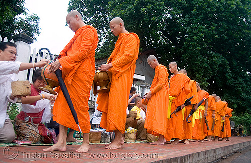 buddhist monks receiving rice alms at dawn - luang prabang (laos), alms bowl, bhagwa, buddhism, buddhist monks, dawn, luang prabang, orange, rice, saffron color, street