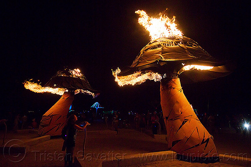 burning mushrooms - xylophage - burning man 2013, art installation, burning man, fire, flames, flaming lotus girls, mushroom, night, sculpture, xylophage