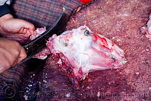 butcher cutting goat head, butcher knife, chevon, cleaver, goat head, goat meat, halal meat, ladakh, leh, meat market, meat shop, mutton, raw meat, skull, लेह