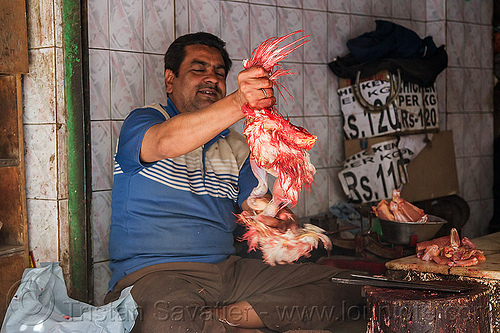 butcher skinning and dismembering a chichen, blood, butcher, chicken, delhi, dismembering, halal, india, man, meat market, meat shop, meat shot, poultry, raw meat, skinning