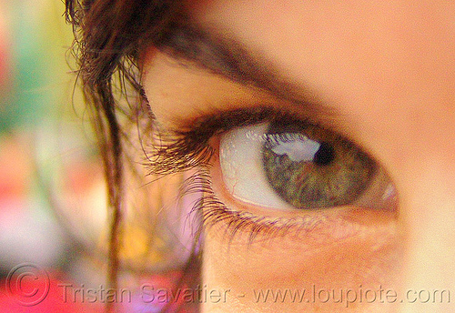 carina's eye, carina, close up, eye color, eyelashes, iris, macro, pupil, right eye, woman