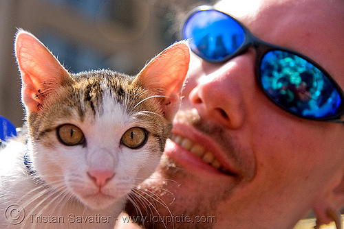 cat and his master - how weird street faire (san francisco), cat, guy, hears, man, master, sunglasses
