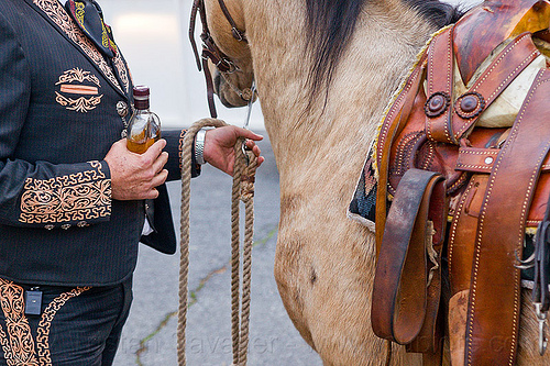 charro - mexican horseman, alcohol, bottle, bridle, decorated suit, embroidery, holding, horse, horseman, leather, man, mexican saddle, rider, rope, standing