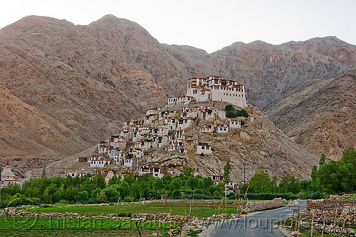 chemrey gompa - road to pangong lake - ladakh (india), hill, mountains, tibetan, tibetan monastery