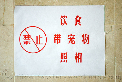 "chinese sign says ""no photos"", chinese, forbidden, no photography, posted, sign"