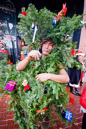 christmas tree costume - santacon, christmas tree, costume, man, santa claus, santacon, santarchy, santas, takamuro, the triple crown