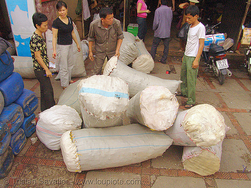 cinnamon bulk bags - vietnam, bags, bulk, chợ đồng xuân, cinnamon, dong xuan market, hanoi