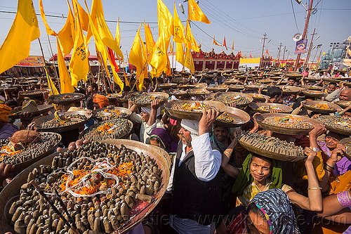 clay shiva lingas hindu offerings - procession at kumbh mela (india), carrying on the head, clay, crowd, hindu ceremony, hinduism, kumbha mela, lingams, lingas, maha kumbh mela, offerings, procession, shiva, street, trays, walking, yellow flags