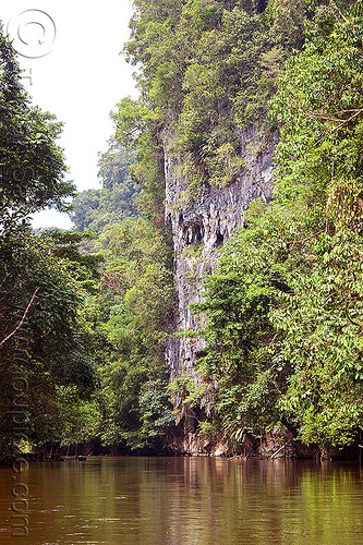 cliff - melinau river - mulu (borneo), borneo, cliff, gunung mulu national park, jungle, malaysia, melinau river, rain forest, sungai melinau