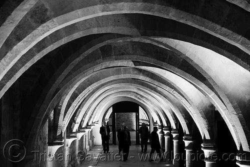 collège des bernardins - gothic architecture -  crypt - stone vaults - monastery (paris), architecture, cellar, cistercian, collège des bernardins, crypt, gothic, medieval, monastery, paris, stone vaults