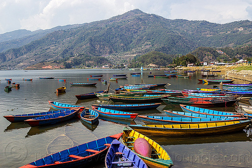 colorful boats on pokhara lake (nepal), mooring, mountains, river boats, water