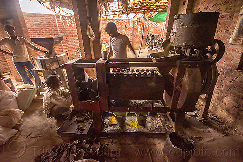 communal oil press machine in indian village, khoaja phool, machine, oil press, village, खोअजा फूल
