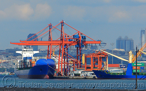 container cranes - istanbul container terminal (turkey), blue, boat, box ship, cargo ship, container cranes, container ship, container terminal, containers, gantry cranes, harbor cranes, harbour crane, istanbul, portainers, portal cranes, shipping, yigitcan, yiğitcan