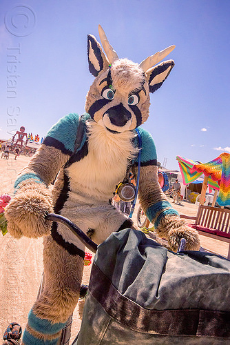 cosplay furry creature - burning man 2015, bicycle, cosplay, costume, fur, furry, riding
