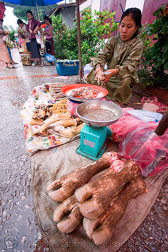 cow feet on the market, beef, cow feet, laos, luang prabang, marlet, meat market, meat shop, raw meat, water buffalo