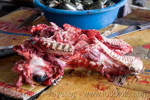 cow head in meat market (laos), beef, cow head, eye, laos, meat market, meat shop, raw meat, teeth, water buffalo