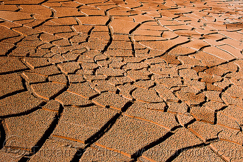 cracked mud, altiplano, cracked mud, desert, drought, dry mud, dry spell, noroeste argentino, pampa