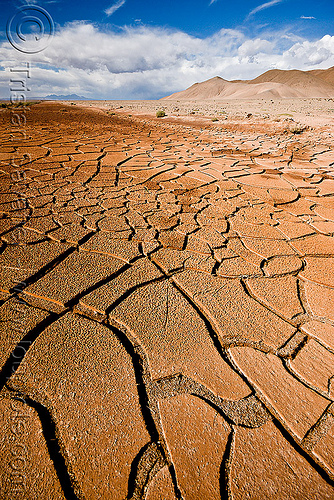 cracked mud - desert, altiplano, argentina, cracked mud, drought, dry mud, dry spell, noroeste argentino, pampa